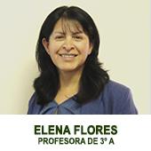 ELENA FLORES -PROFESORA JEFE DE 4 BASICO